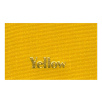 Ribbon Color_Yellow.jpg