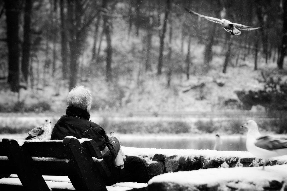 Drinking on the Snow.jpg