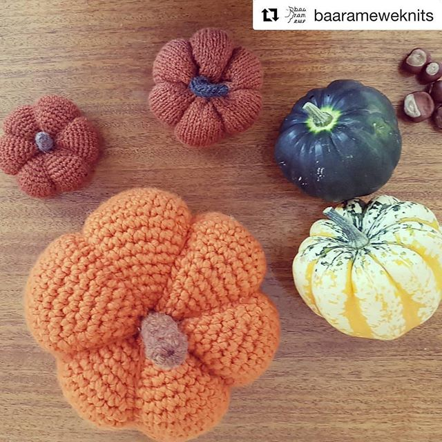 #Repost @baarameweknits with @get_repost ・・・ This week our Jess and Graeme have been knitting and crocheting pumpkins! 🎃🎃🎃 Both patterns are completely FREE- find links to them on the front page of our website.