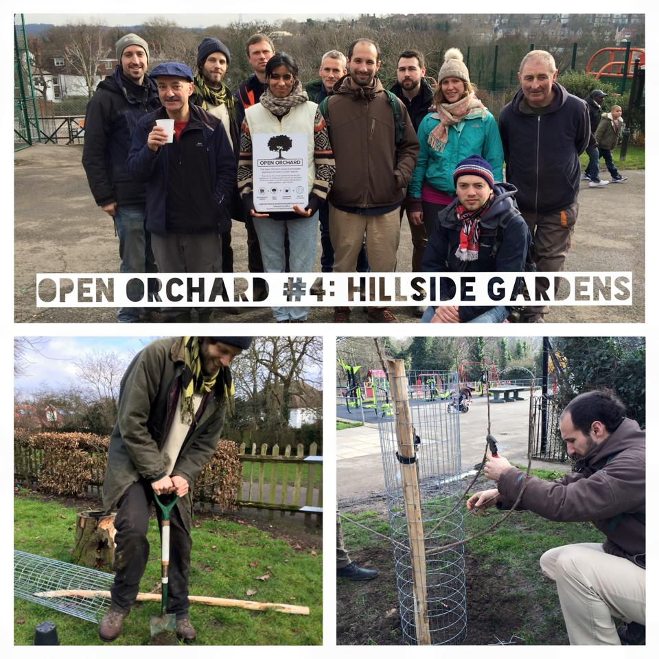 Open Orchard Project West Norwood