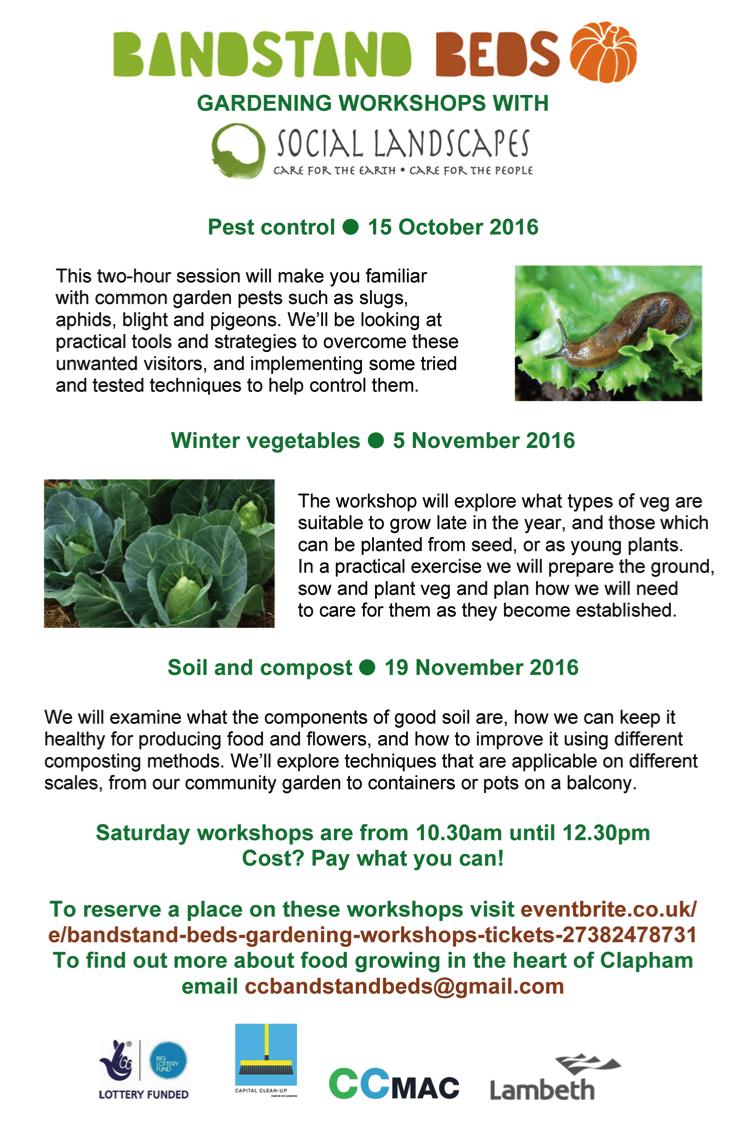 Gardening Workshops at Bandstand Beds Clapham