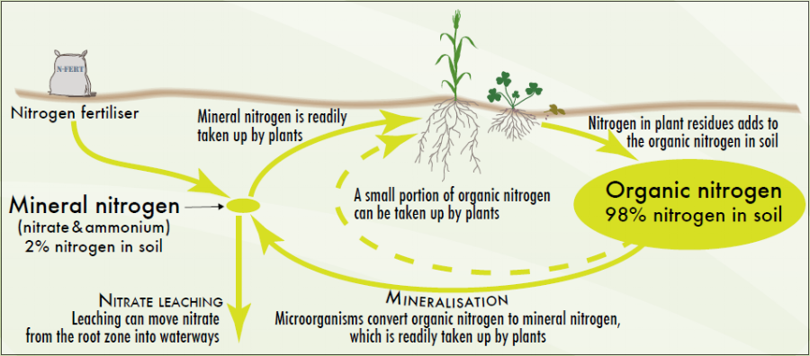 Source: http://www.soilquality.org.au/factsheets/soil-nitrogen-supply