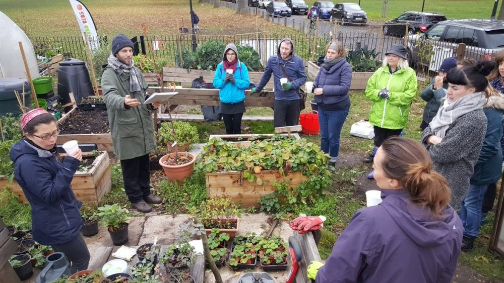 winter veg workshop