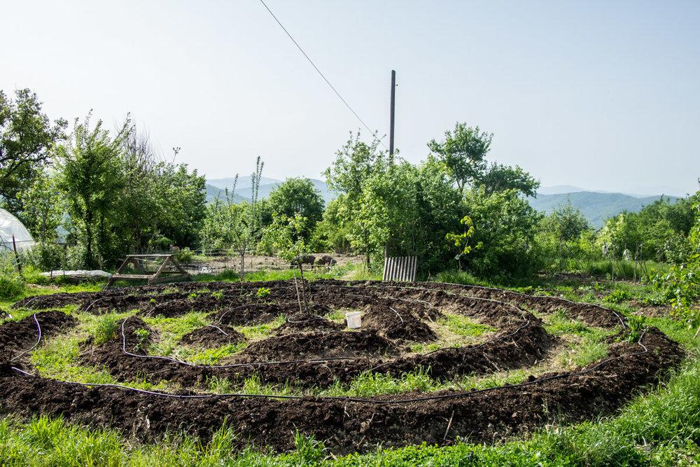 Monestevole mandala garden pdc
