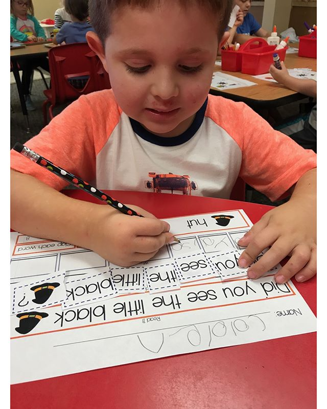 Today we are building sentences, counting words and writing the sentence.  #teachersofig #teachersfollowteachers #teacherspayteachers #iteachtoo #preschool #homeschool