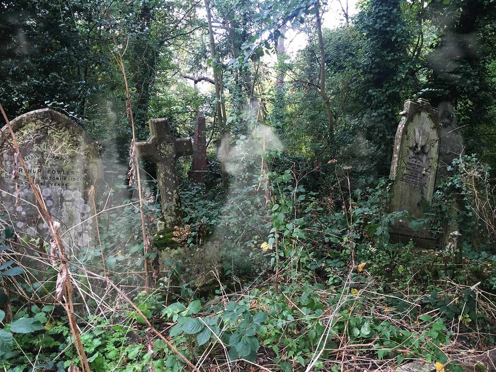 halloween-spooky-places-gojauntly-walk