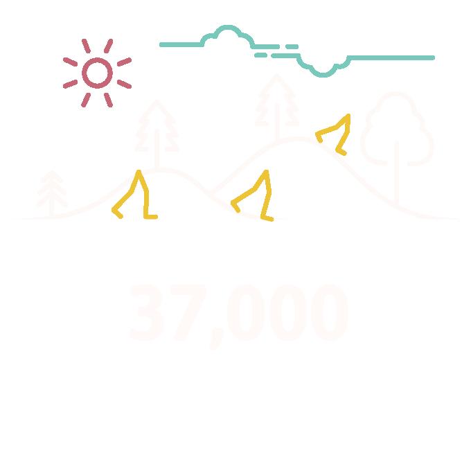 Walking-infographic-gojauntly-stats