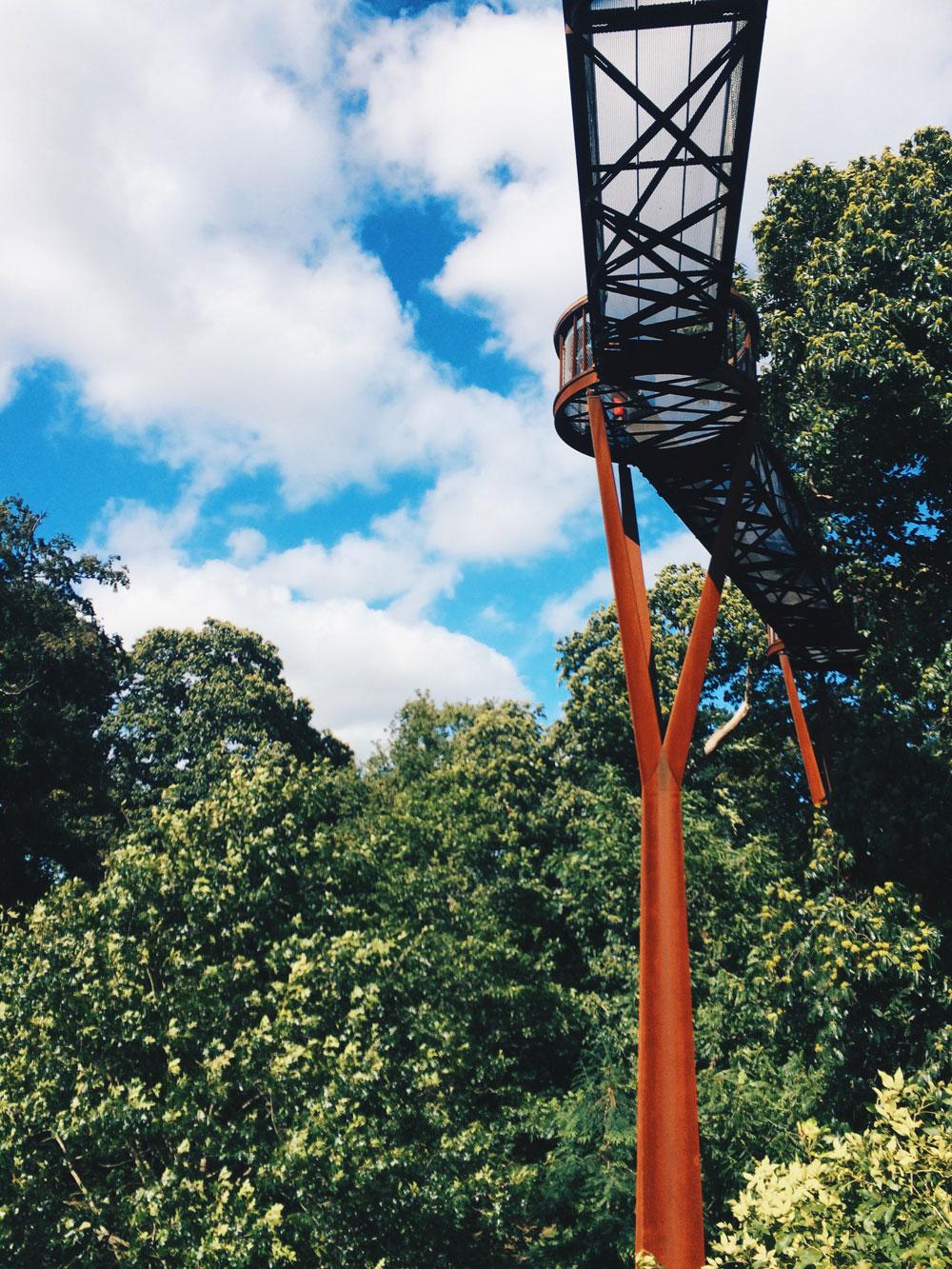 Kew-Gardens-Tree-Walk-Go-Jauntly