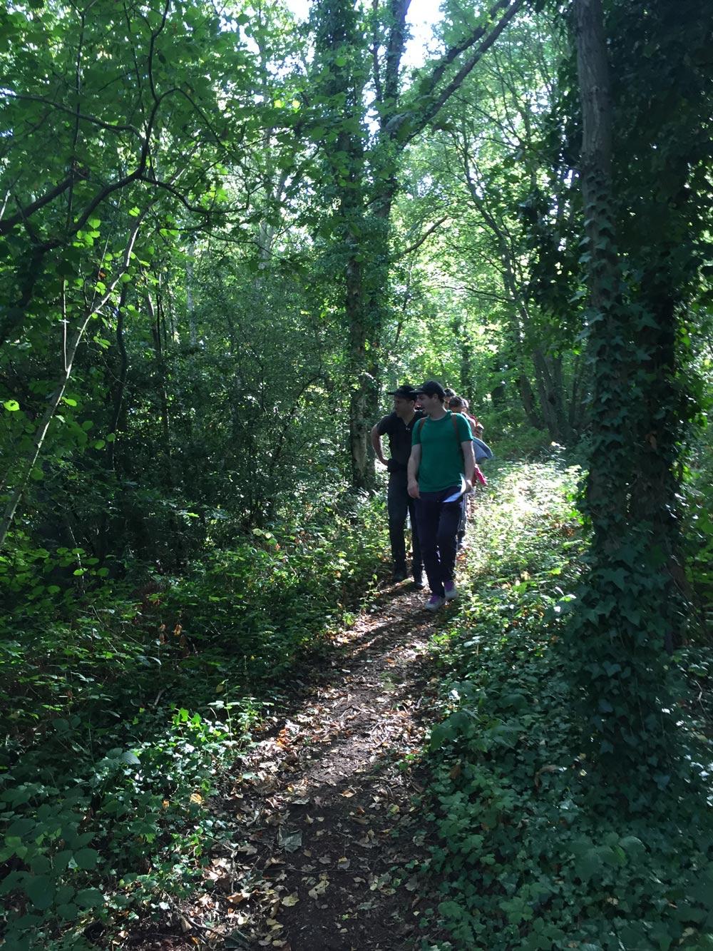 BrockleyNatureReserve-gojauntly-hana-blog-post-walk-2016
