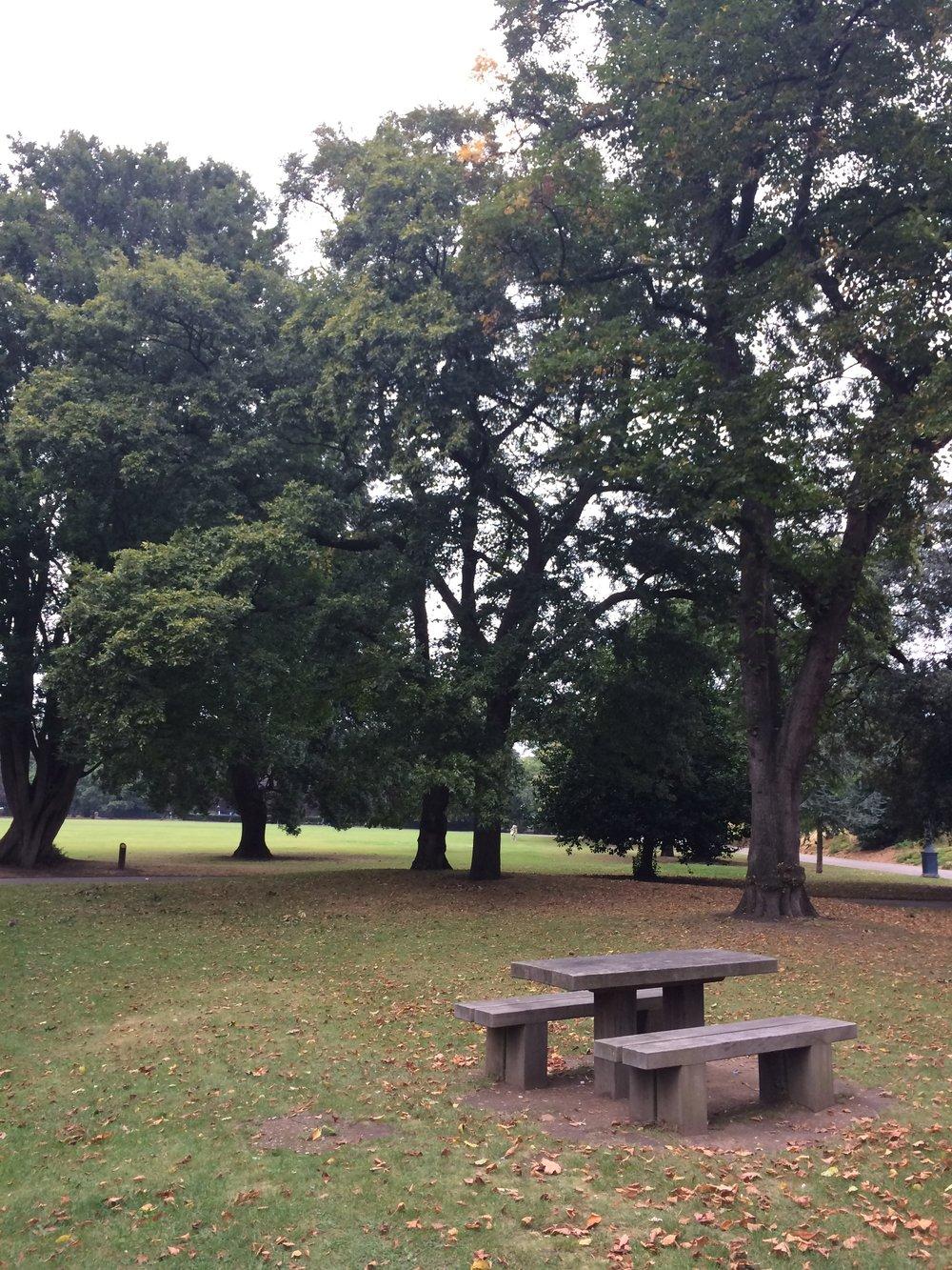 victoria-park-picnic