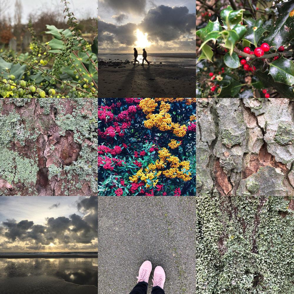 GoJauntly2017-walking-routes.jpg
