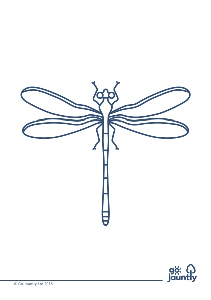 go-jauntly-dragonfly-colour-in.jpg