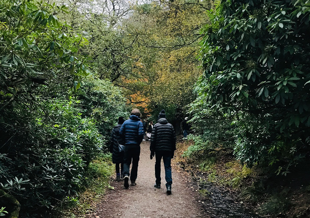 Find an event - From gentle strolls to dementia friendly routes and accessible ambles, there's something for everyone.View all events