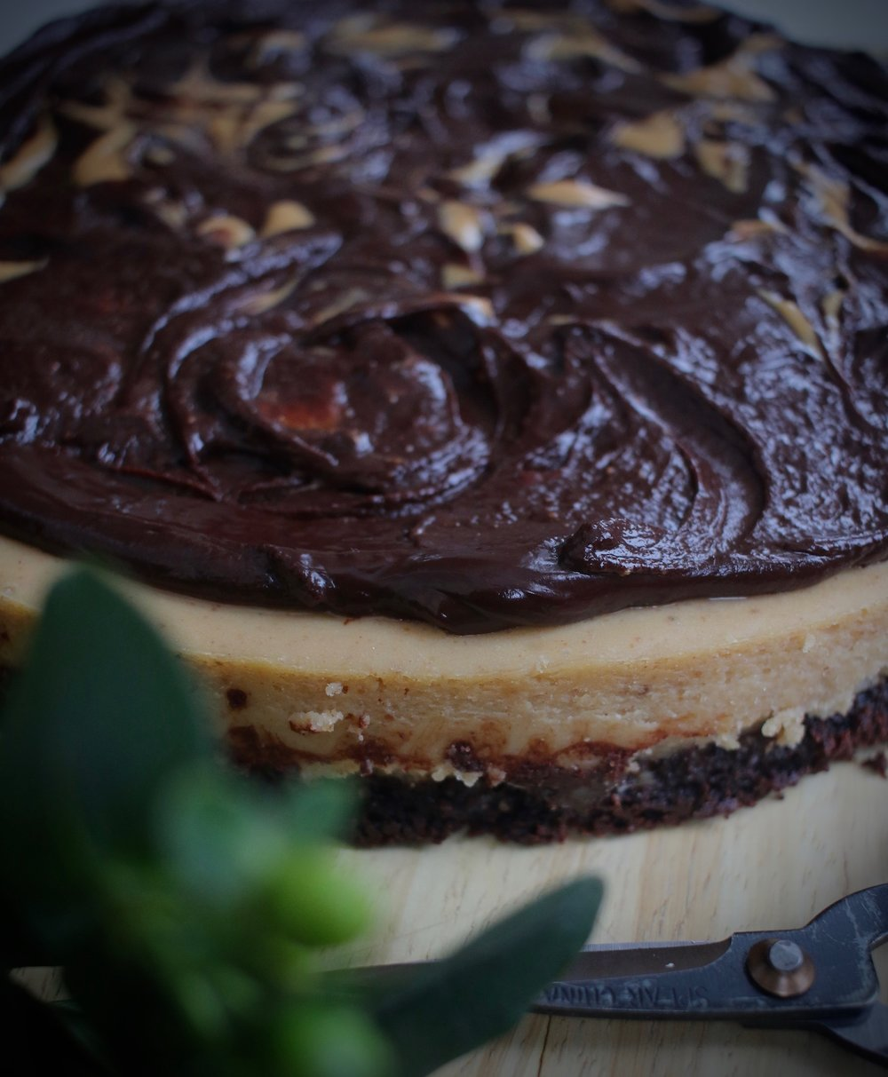 Peanut butter cheese cake with double chocolate crust 3 | Linden & Lavender