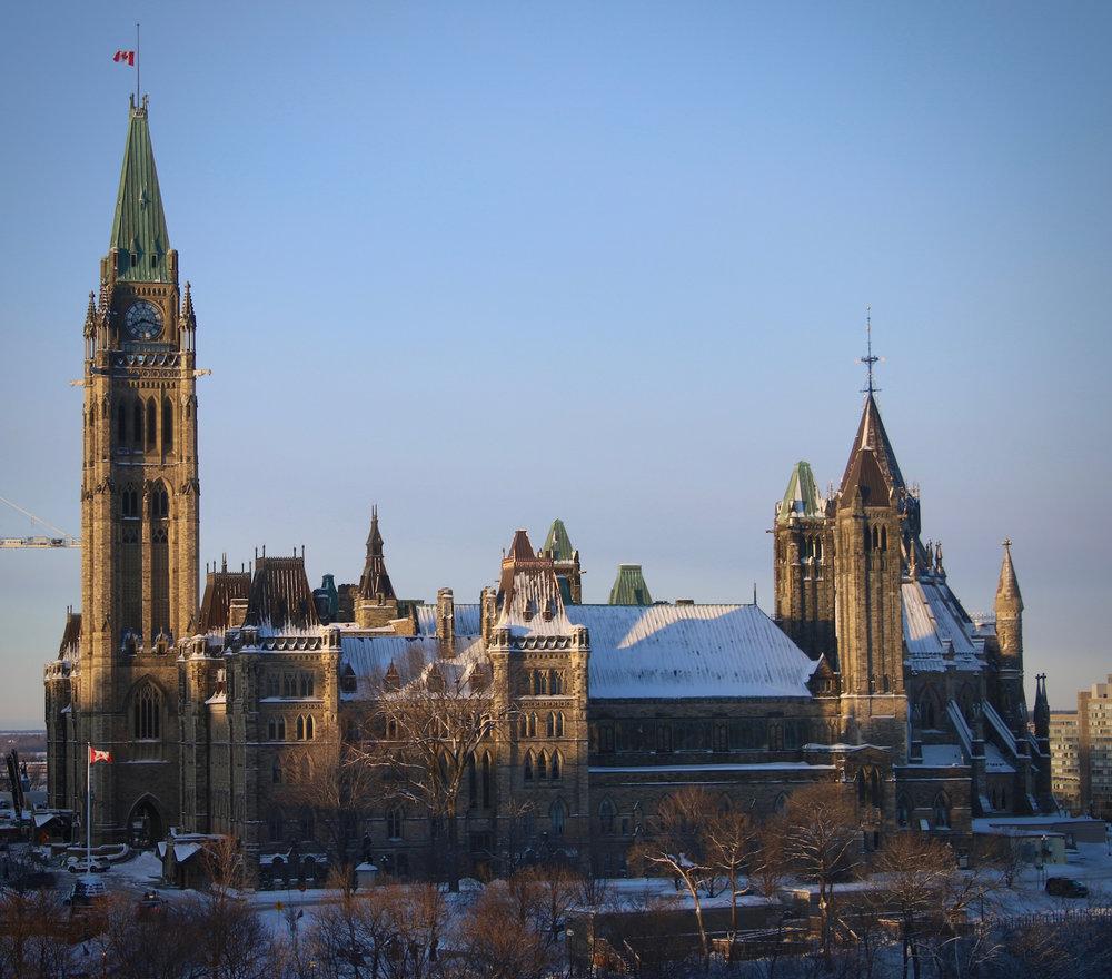 Parliament Hill | Linden & Lavender