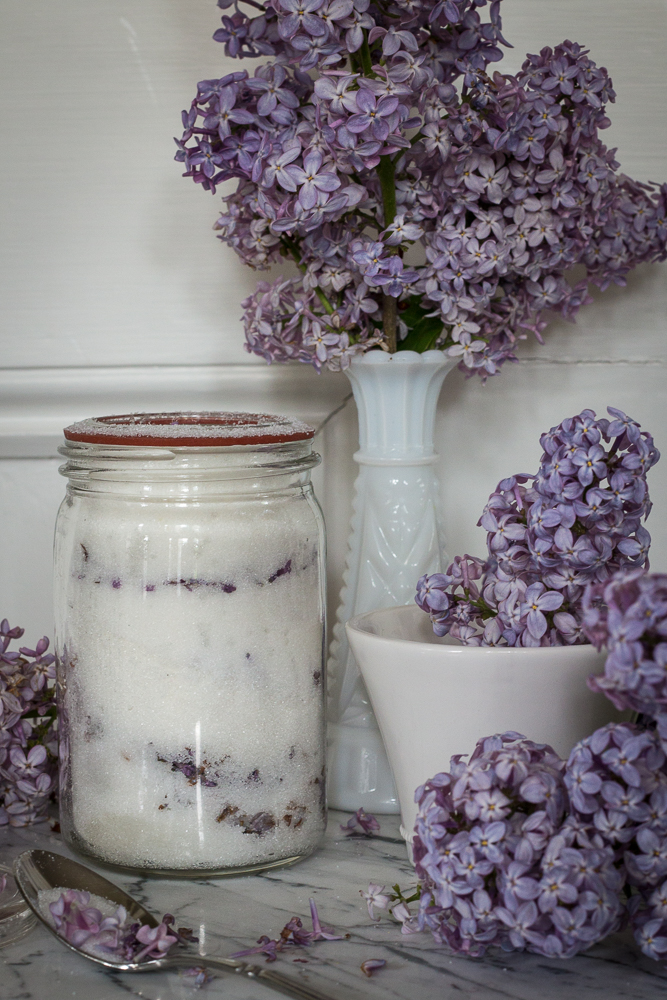 How to make lilac sugar | Linden & Lavender