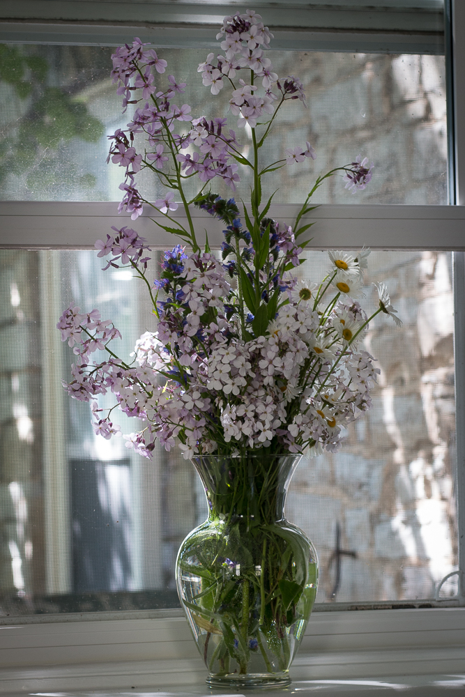 Wildflowers on windowsill | Linden & Lavender
