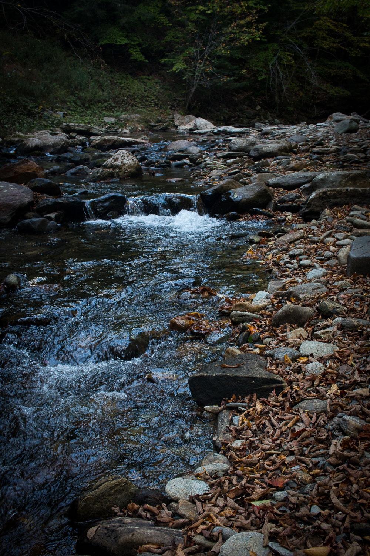 Mill Trail Vermont | Linden & Lavender