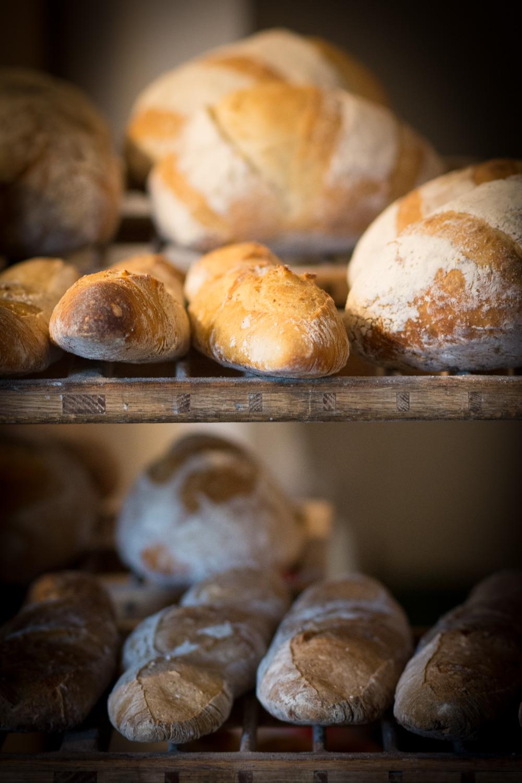 Harvest Market Vermont |  Linden & Lavender