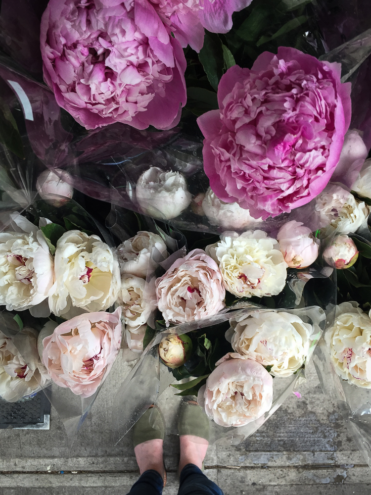Corner Market Peonies | Linden & Lavender Travels