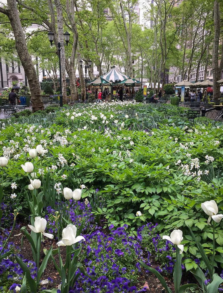 Le Carrousel | Linden & Lavender