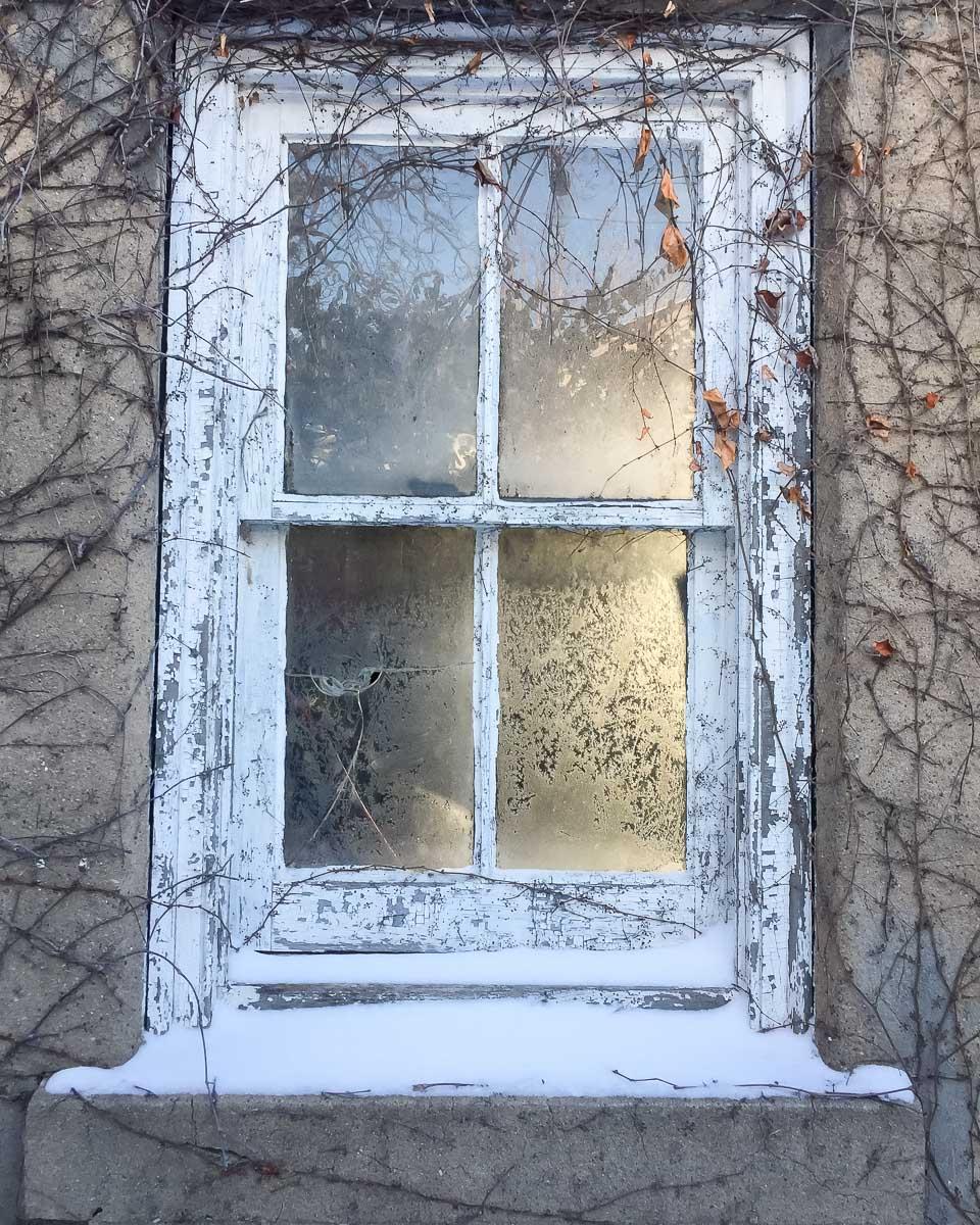 Frosty Window | Linden & Lavender