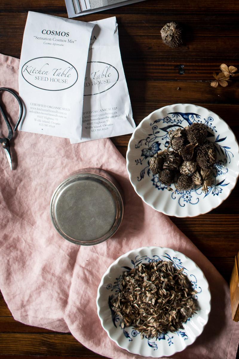 Seeds for Planting | Linden & Lavender