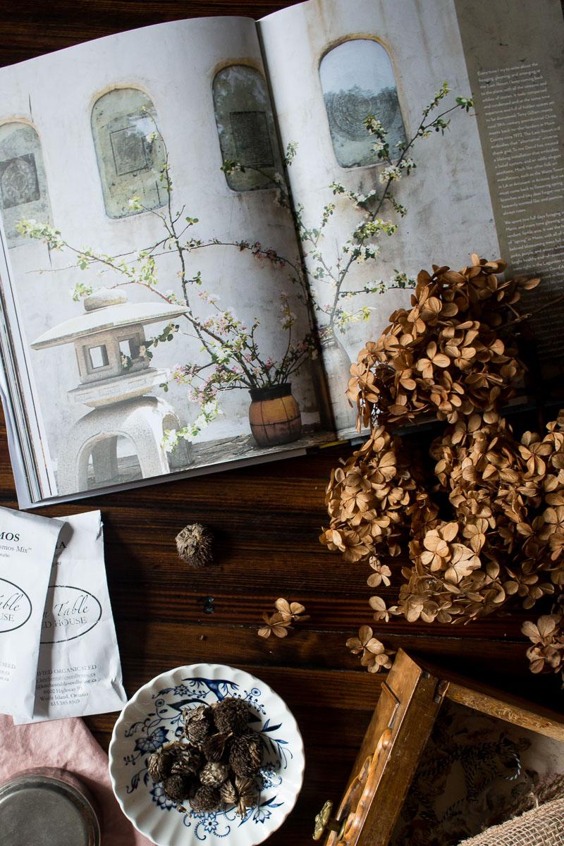 Flowers for March | Linden & Lavender