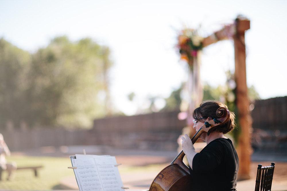 Sarah-Shawn-Wedding-258.jpg
