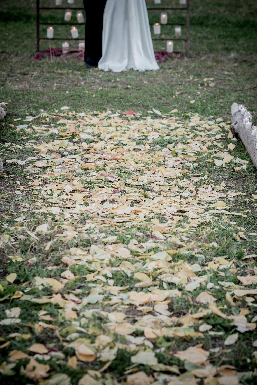 orange_sept-0221.jpg