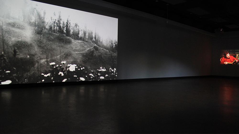 © Gabriela Golder, vue de l'exposition (2016). Photo : Veronica Mockler.