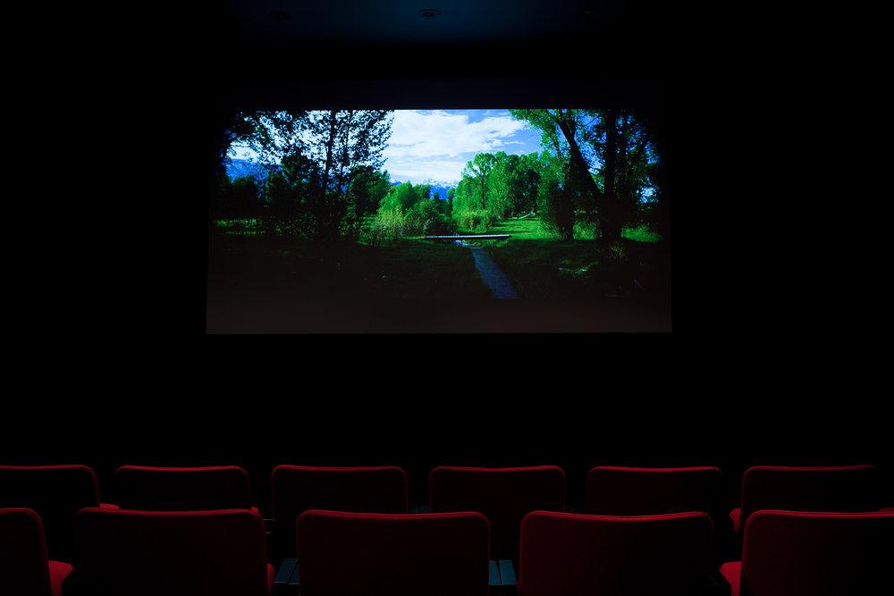 © Phil Peters,  The House That  (2014). Vue de l'exposition. Photo : Marilou Crispin.