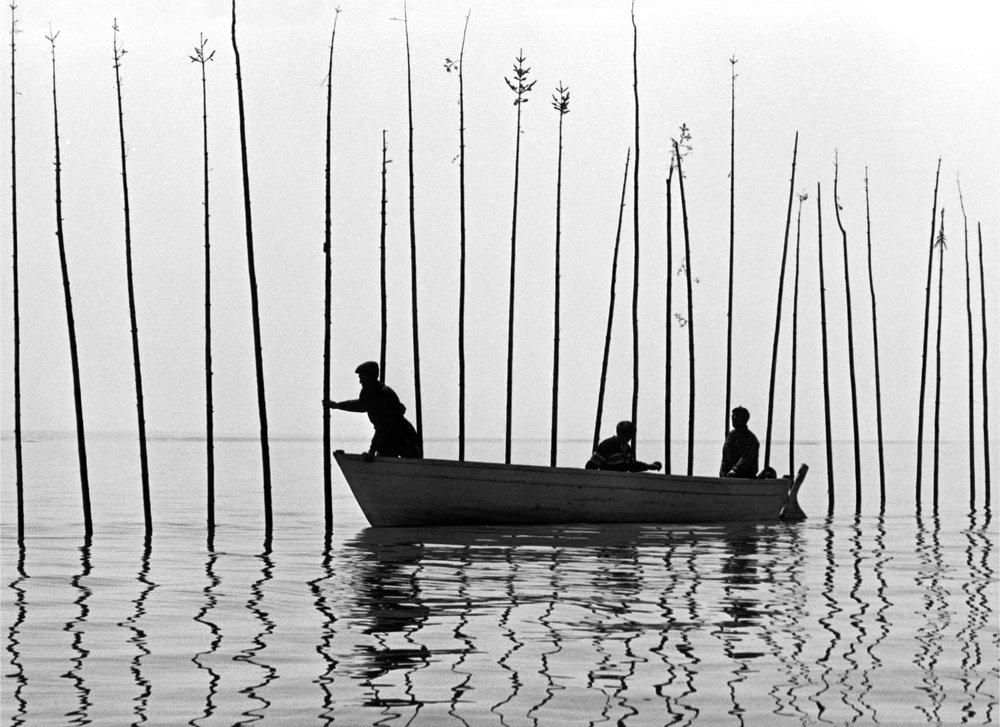 Pour la suite du monde , réalisé par Michel Brault, Pierre Perrault. Produit par Fernand Dansereau. © 1962, Office national du film du Canada. Tous droits réservés
