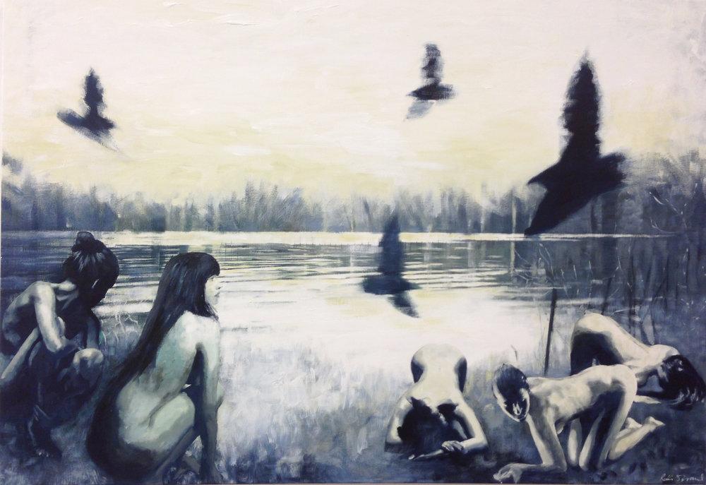 Villfugl / Wild bird