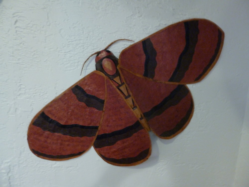 poem moth, 2013