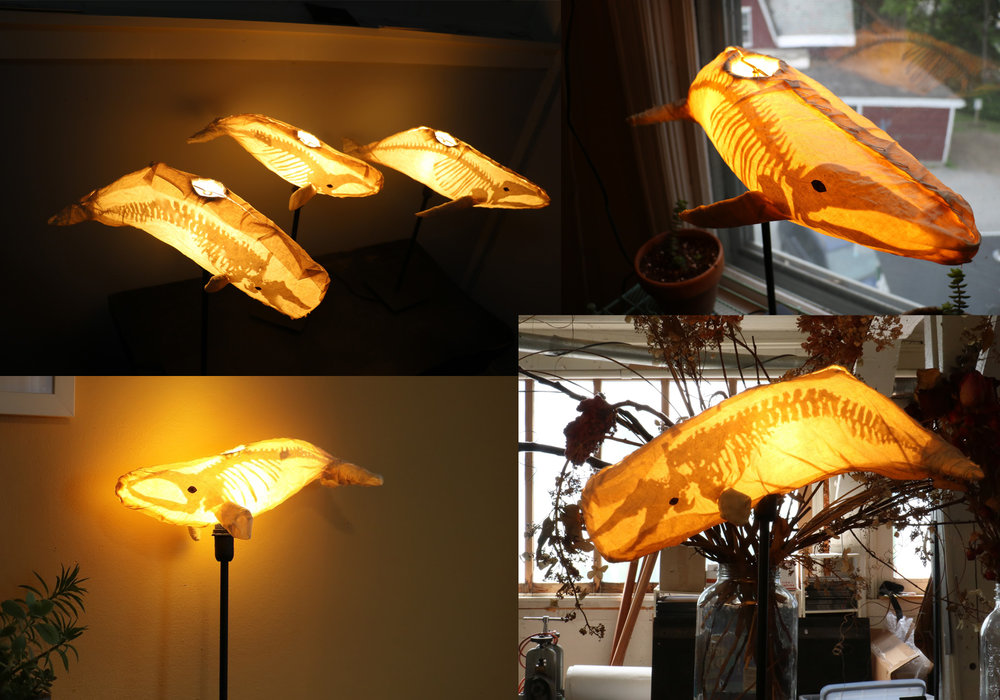 Whale Skeleton Desklamps