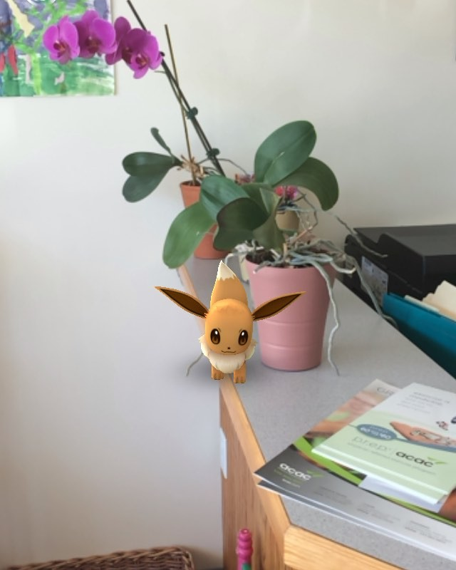Eevee is right on time for her appointment today! #pokemongo #chiropractic #chiropractor #Charlottesville #cville #charlottesvilleva #massage