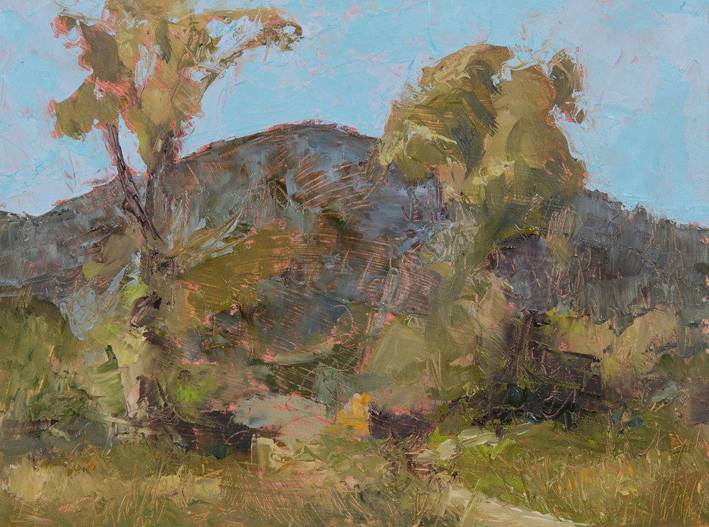 #12 9x12 oil paint