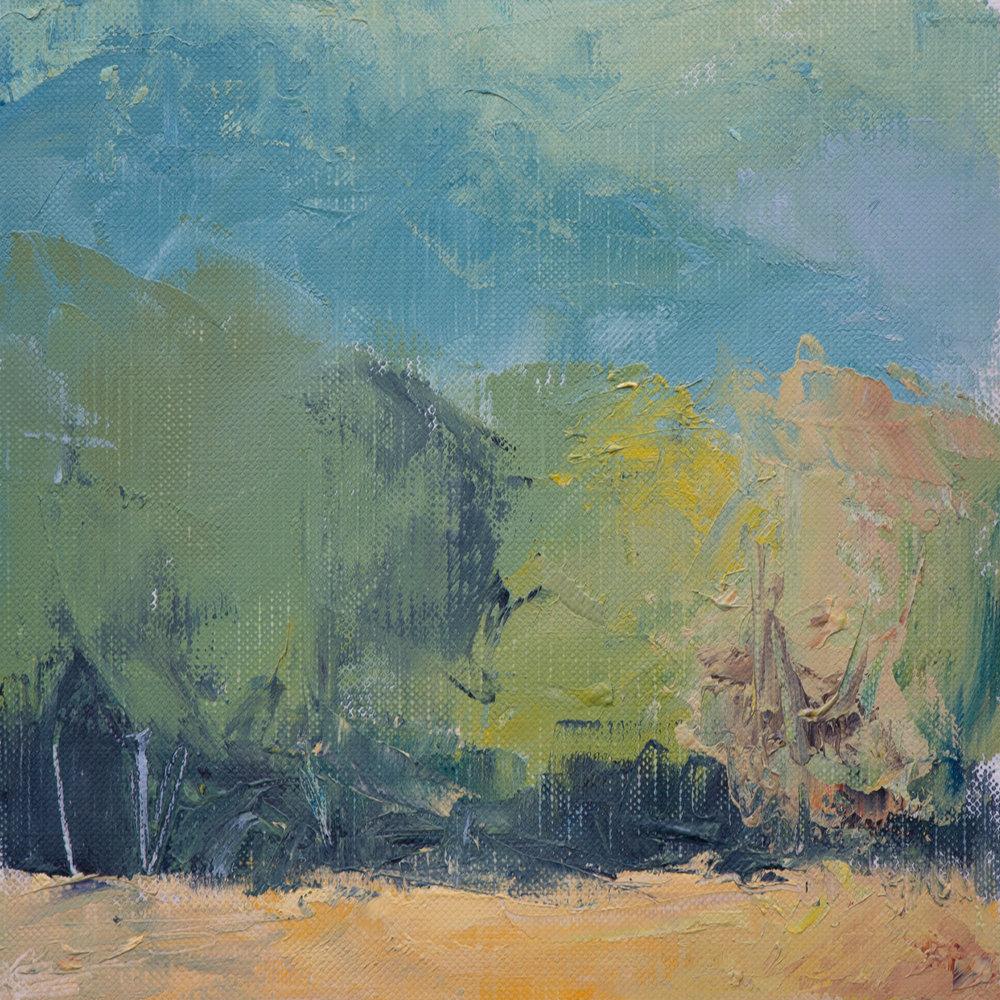 #13 6x6 oil paint