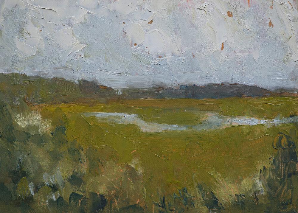 #17 5x7 oil paint