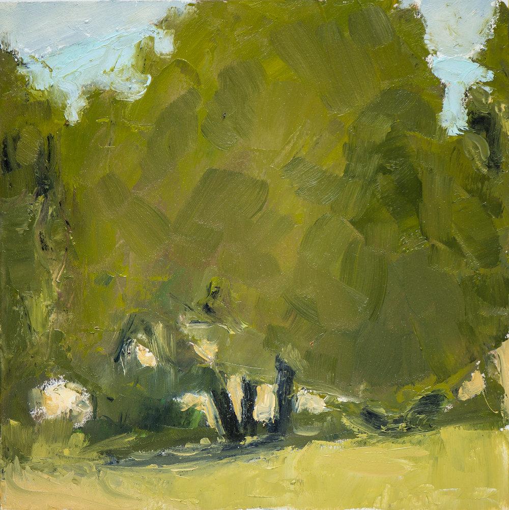 #22 9x9 oil paint