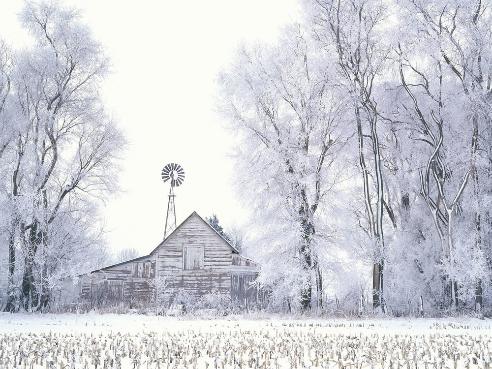 Frosted Farmland  ,  LaSalle County, Illinois