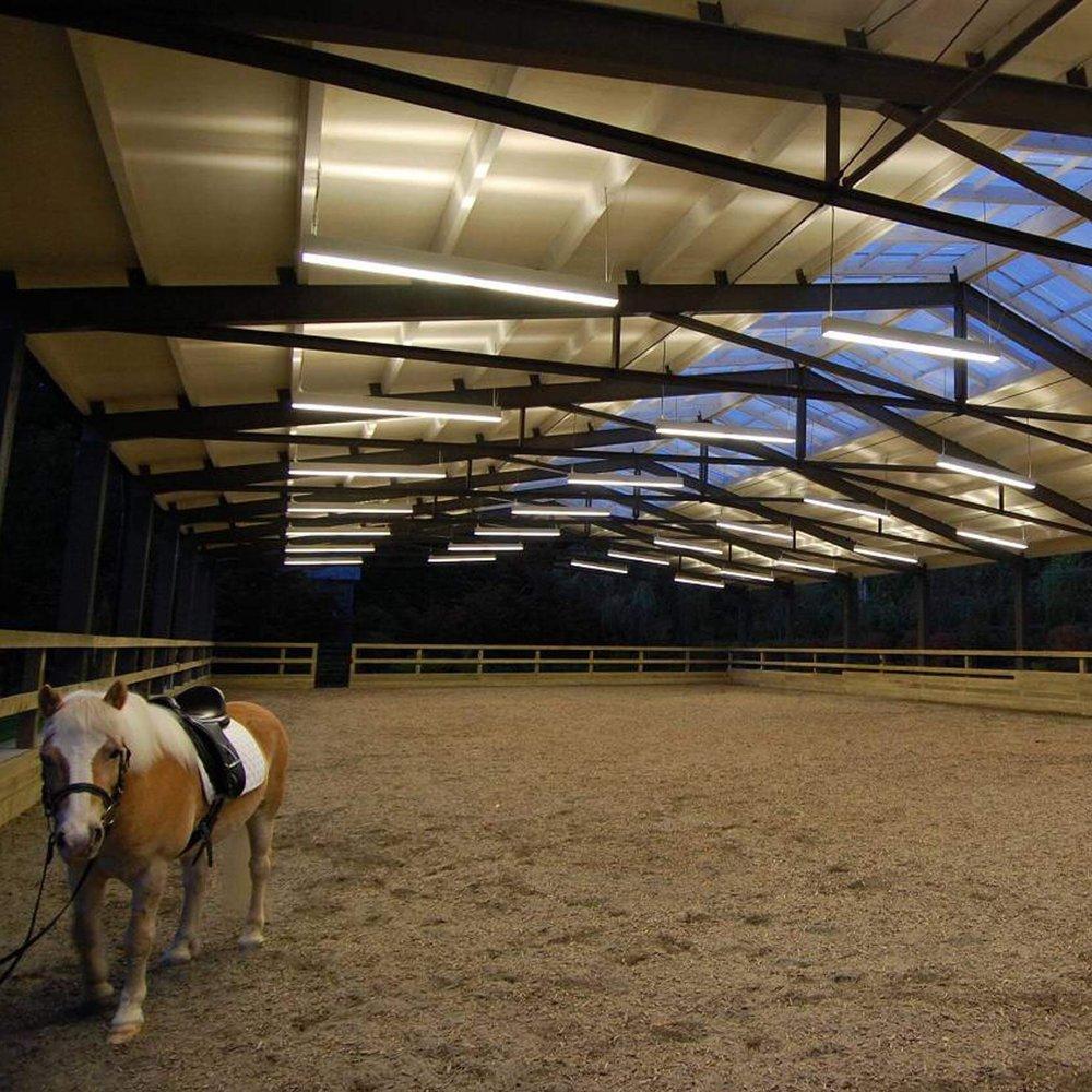 modern-dressage-arena-1.jpg