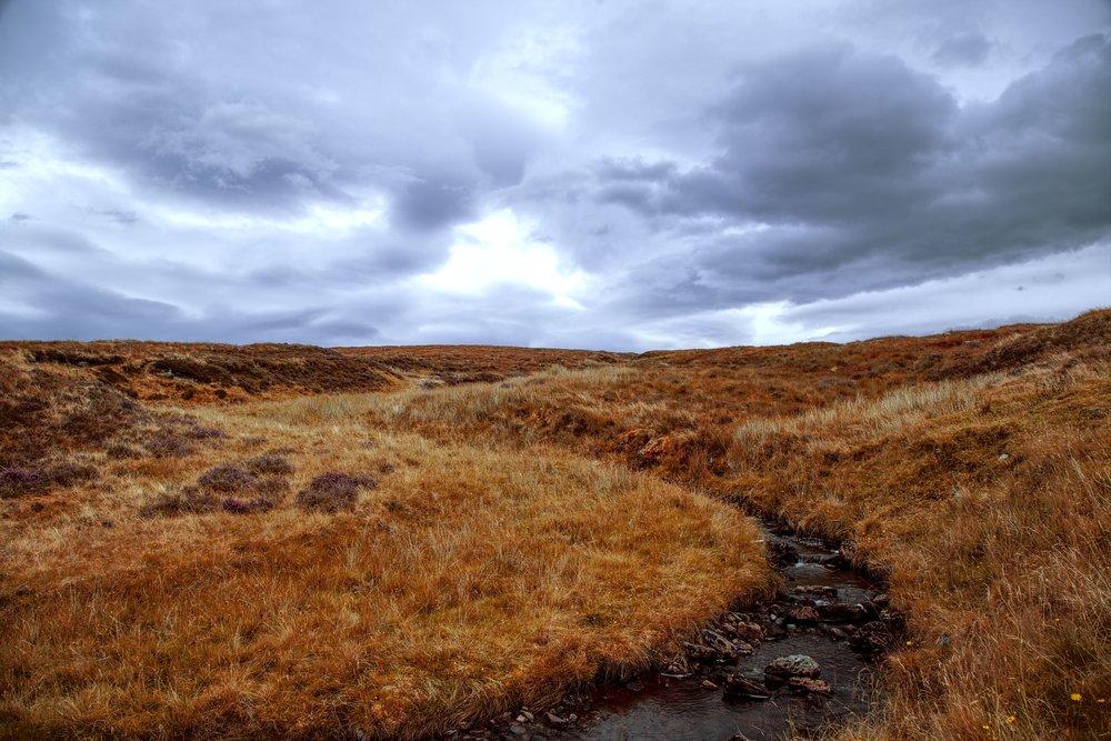 Change the season of a landscape in Darktable