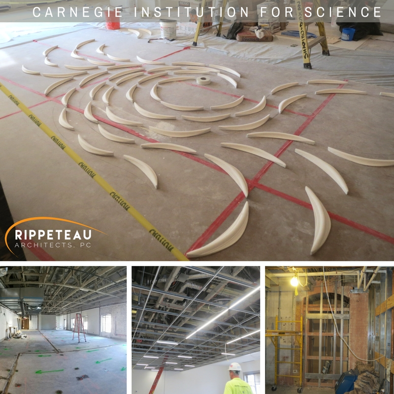 "Above from the top, ""Wind"" (bas-relief composition in plaster in great hall), below, construction update photos."