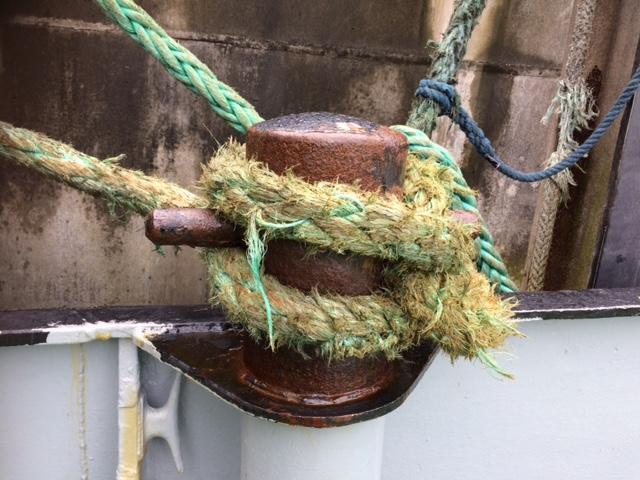 ropes 2.JPG