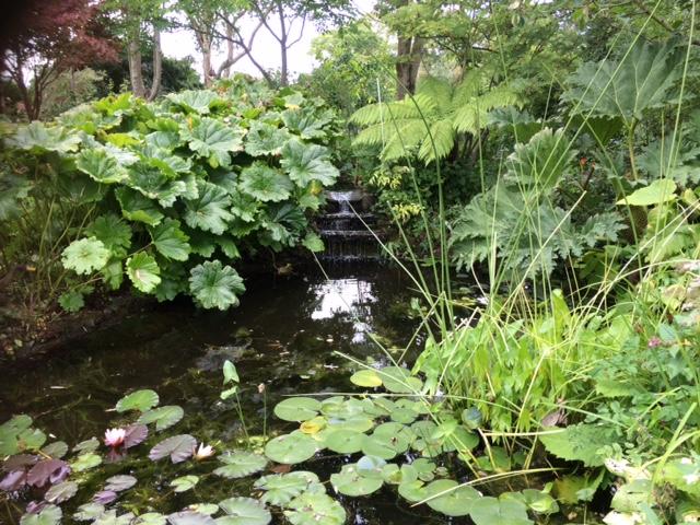 fairy garden pond.JPG