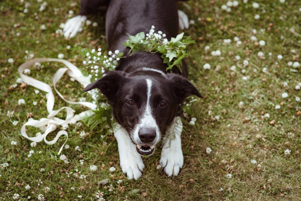 funny-wedding-photography-scotland).jpg