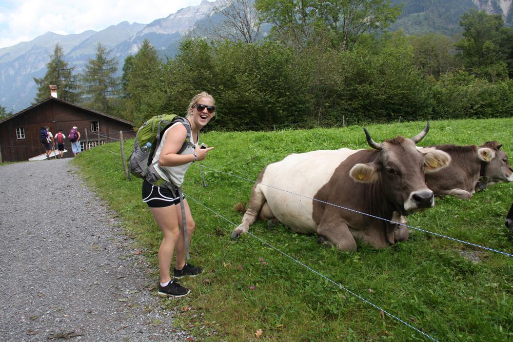 Cows and Simone