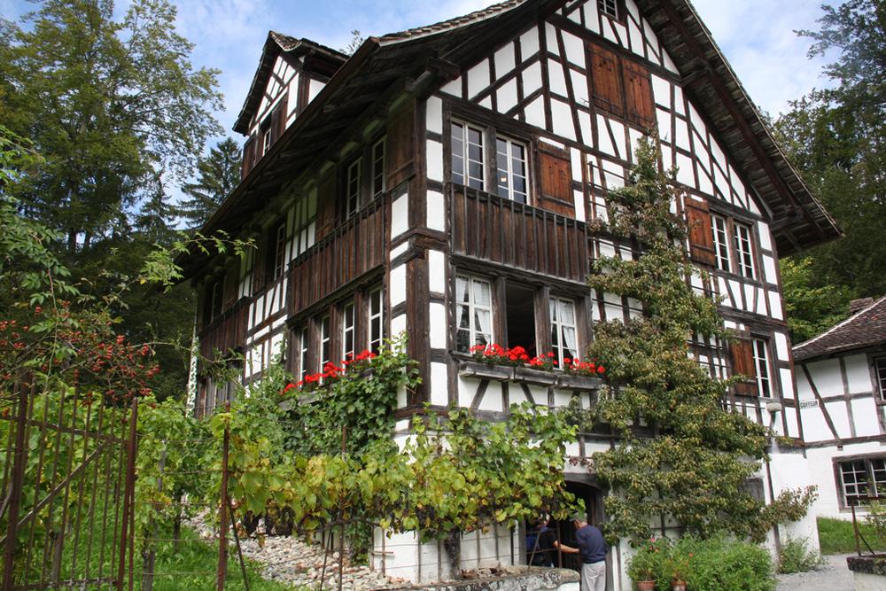 Zurich house